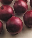 Onion - Red