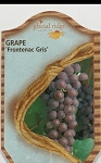 Grapes - Frontenac Gris - 15 Pack