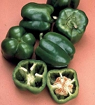 Peppers - Sweet Bell Boy - Organic - 18