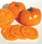 Heirloom Tomatoes - Valencia